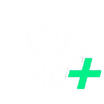 TV Palmeiras Plus